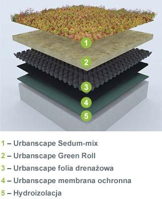Dachy zielone Urbanscape